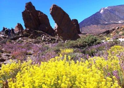 Caldera del Teide