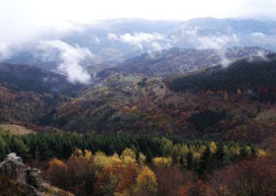 Abri Faucon Crécerelle : magnifique vue sur Geishouse depuis la plate-forme