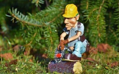 Alerte travaux forestiers sur le secteur de Mollau